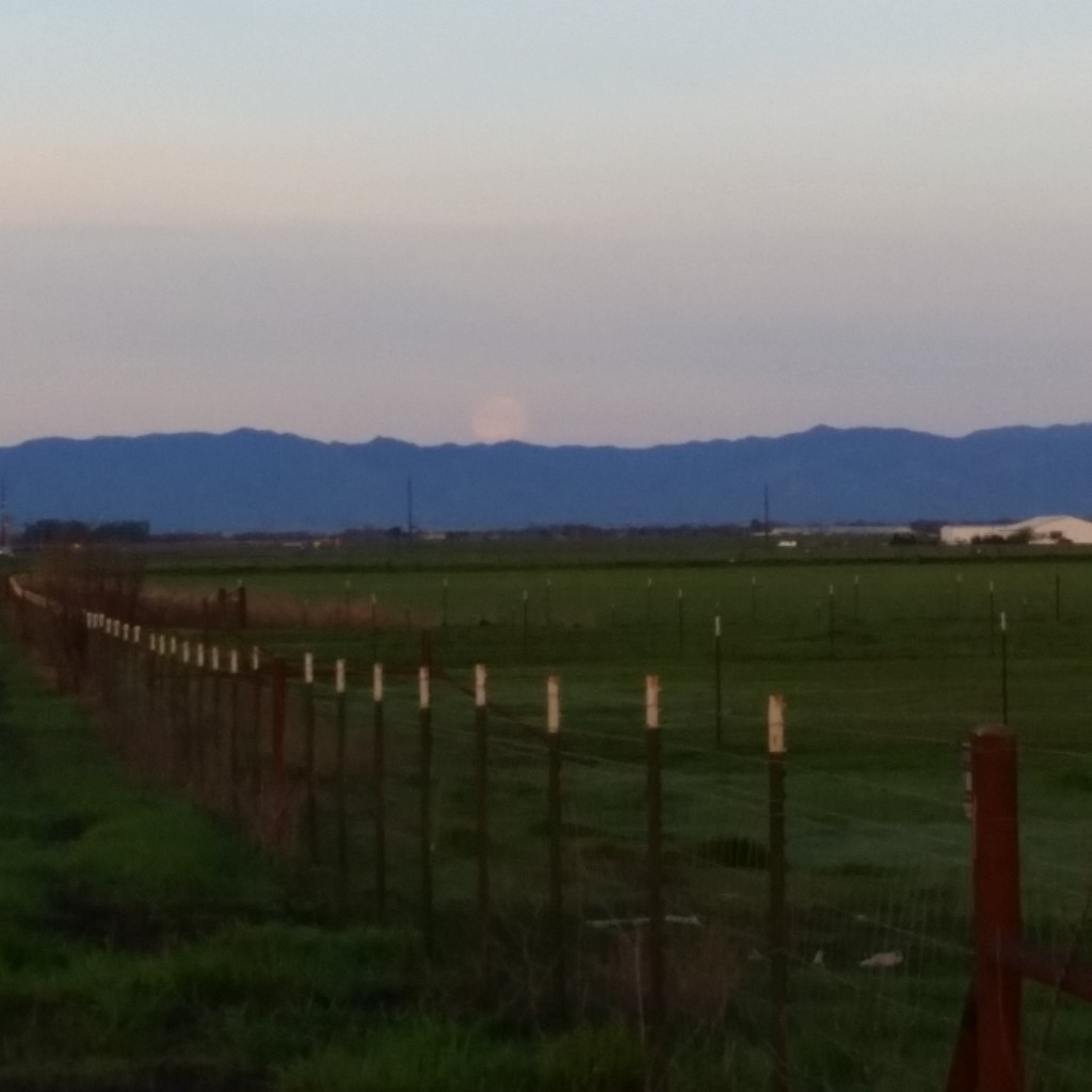 Looking from North Davis towards Winters area.