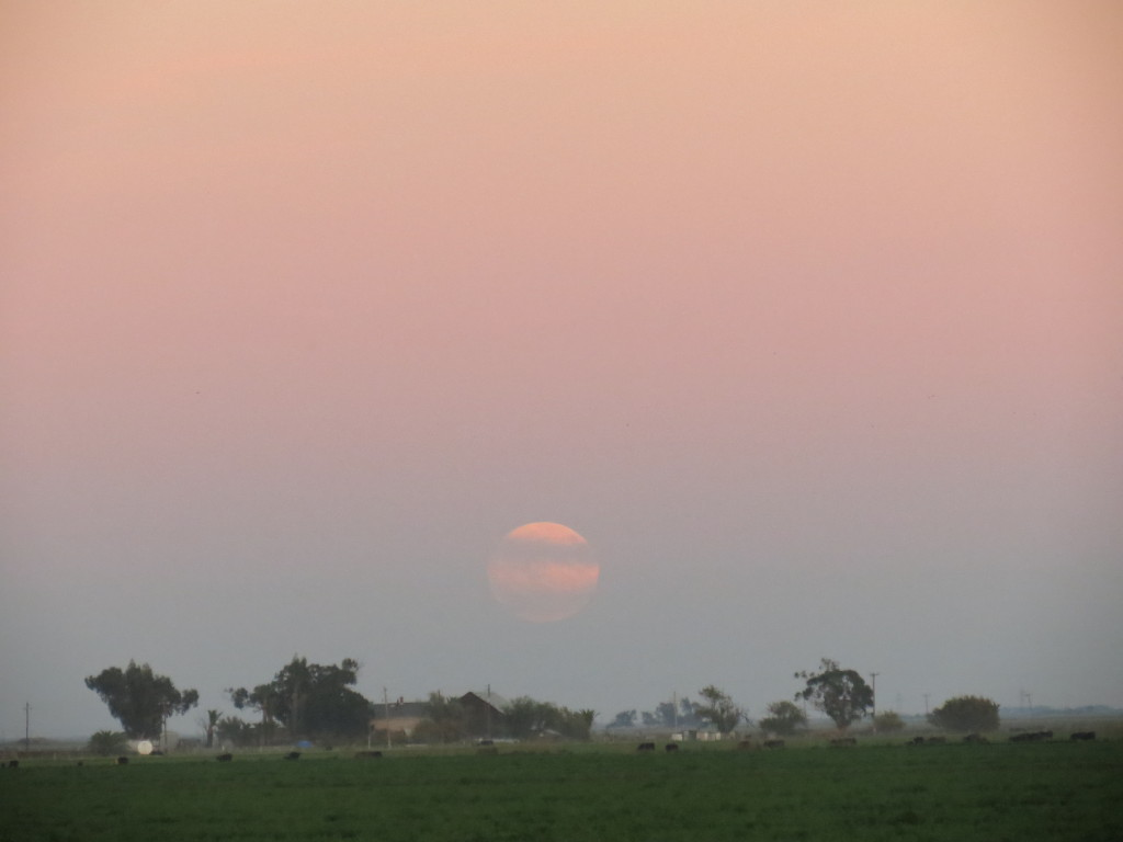 Super Moon over Dixon, California
